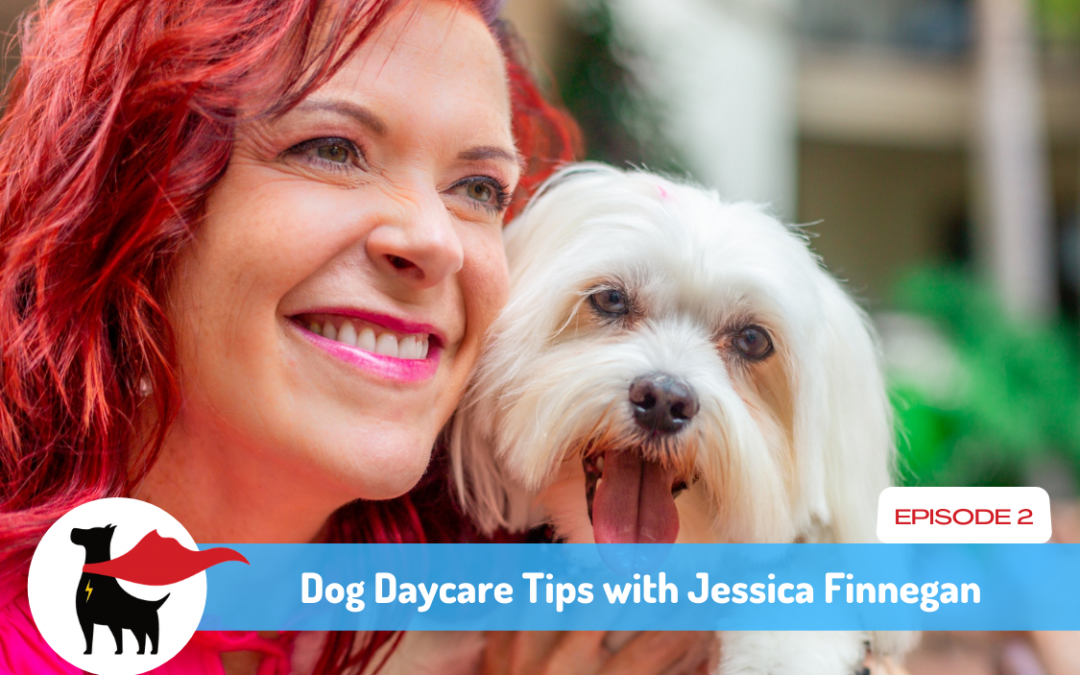 Episode 2: Dog Daycare Tips with Jessica Finnegan