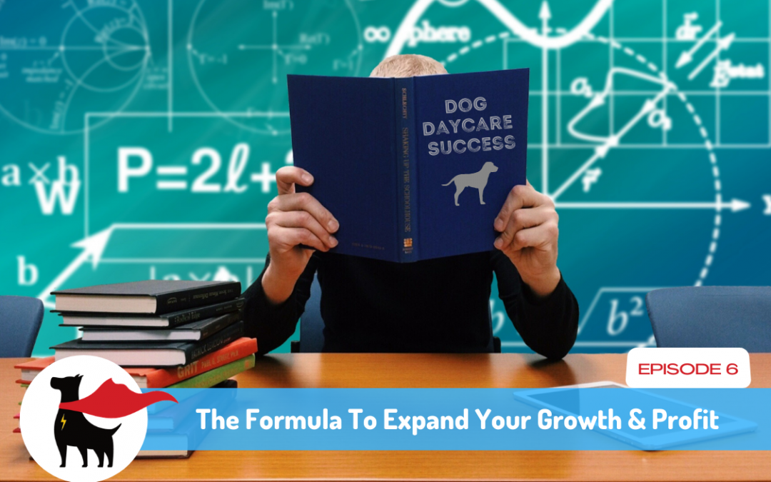 Episode 6: The Formula To Expand Your Growth & Profit